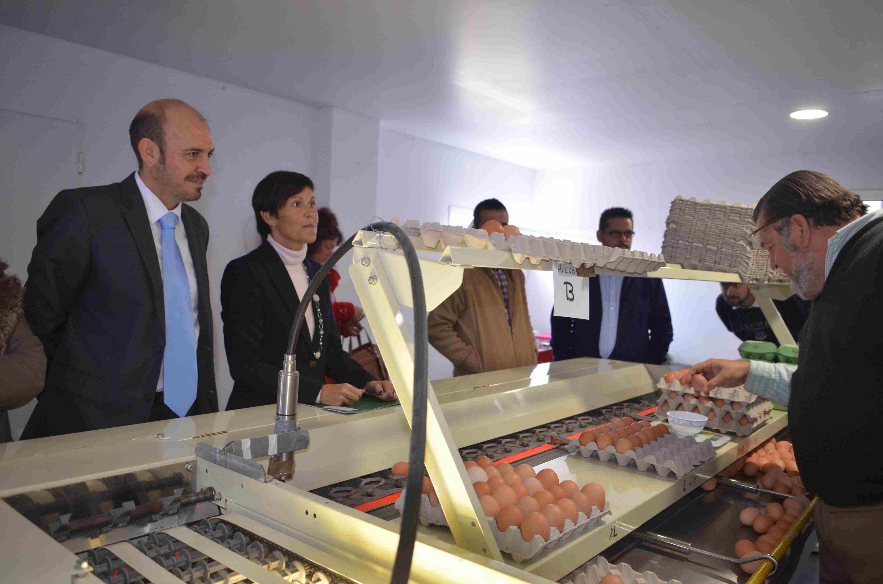 Cártama tiene la mayor granja de huevos ecológicos de la provincia y produce 2.500 diarios
